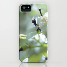 White Flowers iPhone & iPod Case by Richard Torres Photo - $35.00