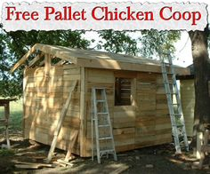 Free Pallet Chicken Coop or weekend get away cabin !