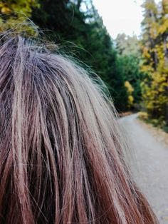 Autumn, Long Hair Styles, Photography, Beauty, Fall, Fotografia, Fotografie, Long Hairstyle, Photo Shoot