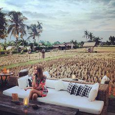 http://www.sardinebali.com Restaurant in Bali