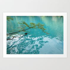 Jump right in! Art Print by María Palacios - $18.00