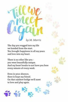 🐾😢🐾 'Til we meet Again By M. Morris The day you wagged into my life we bonded from the start. You brought happiness to all my years and love into my heart. There is no other like you ~ you were beautifully unique. And my heart breaks to not have you here every minute of every week. Even in your absence, there is hope my friend. On that rainbow bridge we'll meet to love and play again. Dedicated to our fur baby Daisie Belle 19 October 2003-3 June 2015 🐾😢🐾