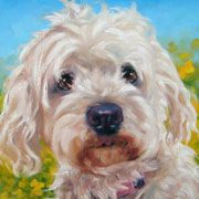 Pet Portraits in Oils by puci  I want one of my pup!!
