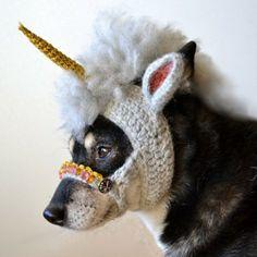 Dog Unicorn Mask! http://whatpetswant.com/dog-unicorn-mask/
