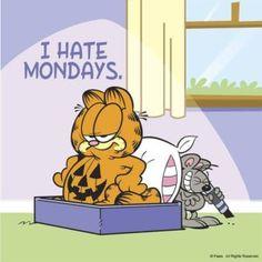 Best Garfield I hate mondays Pics Garfield Monday, Garfield Quotes, Garfield Cartoon, Garfield And Odie, Garfield Comics, Garfield Pictures, Cat Cartoons, Monday Memes, Monday Quotes