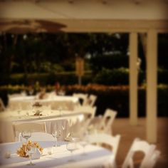 Cute little dinner isn't it? I love those little fish with the coral. - @weddingtidbits- #webstagram