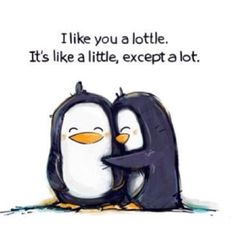 Penguin love is always adorable. <3