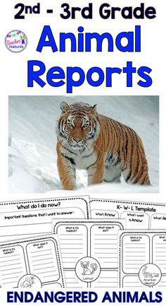 ENDANGERED ANIMAL | ANIMAL REPORTS | BOOM CARDS | Research Project Templates for Informational Writing: Endangered Animals. No Prep! Everything you need to get your students started on a beginning guided research writing project. Research Animals and Animal Habitats, while following the Guided Research Process. #animalreports #endangeredanimals #writing #TeacherFeatures #researchprojecttemplates #2ndgrade #3rdgrade