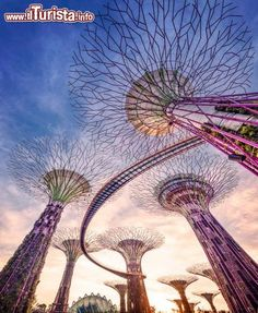 Super alberi Singapore Gardens By the Bay