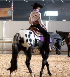 I love purple on black an grey horses