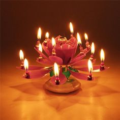 Take your birthday parties to the next level with this Blooming Musical Candle! This amazing, lotus, flower candle plays the birthday song and opens up, as if blooming, into a beautiful flower. Birthday Menu, Birthday Songs, Birthday Parties, Pink Candles, Best Candles, Happy Birthday Messages, Birthday Greetings, Flower Center, Flower Petals