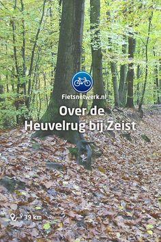 🚲 Over de Heuvelrug bij Zeist #Fietsen #Utrecht #Gezond #Heuvelrug #Natuur Biking, Netherlands, Maps, Camper, Chill, Europe, Travel, Saints, Passau