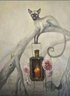 Siamese cat, lantern, roses, shades of grey, strange