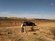 Nuestros amigos de Integral Carbon supervisando los campos de ensayos del biofertilizante de algas