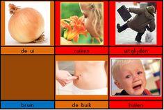 Woordkaartjes voor het aanleren van de klank /ui/
