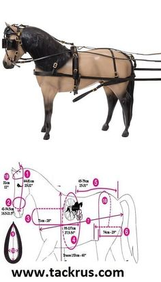 Harnesses 72586: Horse Tack Tough-1 Miniature Driving Harness 3174-6917-2 -> BUY IT NOW ONLY: $133.5 on eBay!