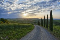 Photograph Tuscany countryside in early morning light by Agrippino Salerno on 500px