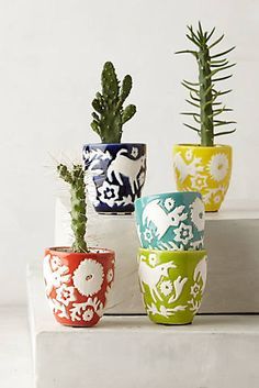 Concha Garden Pot Set