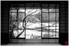 Damien Douxchamps' Photography - Untitled - _0069631