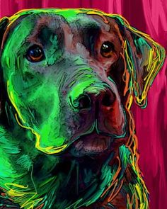 Black Lab Labrador Retriever Dog Art