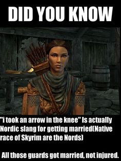 "Skyrim My sister got mad at my brother for saying,""I took an arrow to the knee"" incorrectly"