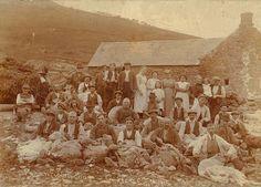 Shearing sheep at Penantigi Uchaf, Dinas Mawddwy, 14 July 1915 Sheep Shearing, Research Images, Cymru, England And Scotland, North Wales, Women In History, Ghost Towns, British Isles