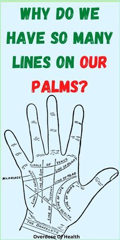 Why Do We Have So Many Lines On Our Palms? Health Facts, Oral Health, Health Quotes, Sleep Deprivation Symptoms, Cracked Feet Remedies, Lower Back Dimples, The Hormone Cure, Daily Routine For Women, Health Planner