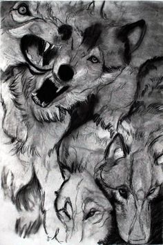 wolf drawing | Tumblr