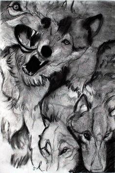 wolf drawing   Tumblr