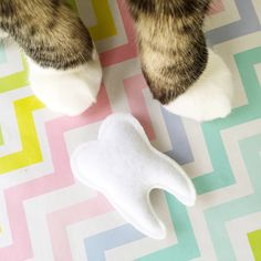 Catnip Tooth Cat Toy by housecatclub on Etsy https://www.etsy.com/listing/449879538/catnip-tooth-cat-toy