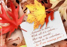 Dgreetings    Send this touchy Miss You card in this Autumn Season to your loved ones...