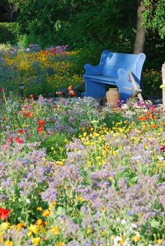 sit a while and enjoy Val's wildflower garden.