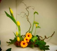 Unique flower arrangements for every occasion. We offer same day delivery in Market Drayton and Shropshire area. Unique Flower Arrangements, Unique Flowers, Houseplants, Cactus Plants, Free Delivery, Succulents, Bouquet, Rose, Birthday