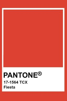 Pantone Swatches, Color Swatches, Pantone Colour Palettes, Pantone Color, Pantone Orange, Colour Pallete, Colour Board, Red Aesthetic, Textiles