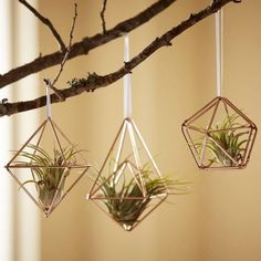 These geometric ornaments are sure to outlast the holiday season.