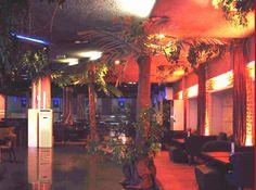 jungle decor