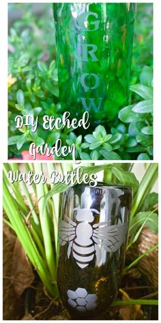 DIY Etched Plant Water Bottle. Super quick, easy and inexpensive project. Perfect for gifts too! - 2 Bees in a Pod