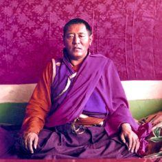 Jigme+Phuntsok+Rinpoche3.jpg (687×690)
