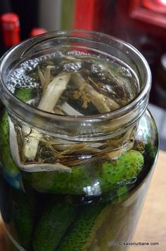cum se prepara castravetii murati in saramura (14) Pickles, Cucumber, Dinner Recipes, Meals, Food, Canning, Meal, Essen, Pickle