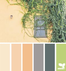 creeping hues - design seeds guest bath color scheme