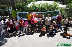 CamperOnSpa 2014 - la festa al Tahiti Camping & Bungalow Park per gli Amici di www.camperonline.com