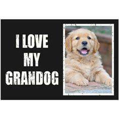 i love my grandog 5x7 frame