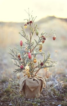 Pretty delicate tree and ornaments. Natural #holiday decor.
