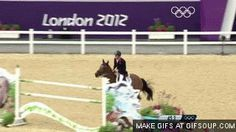 Image result for jumping horse gif