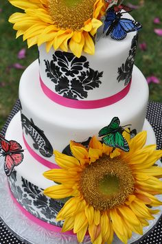 Sunflower 0211 by thecakemamas, via Flickr