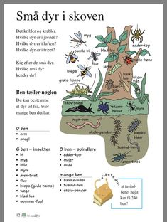 Animal Posters, Good To Know, Sprog, Activities For Kids, Barn, Classroom, Science, Teaching, Education