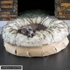 Animals Matter Faux Fur Shag Puff Ortho White Brown Tip Luxury Dog Bed