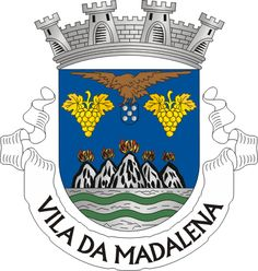 Brasão Vila de Madalena