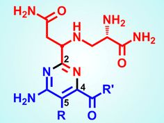 Building anticancer drugs without side-effects