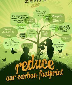 carbon footprint essay